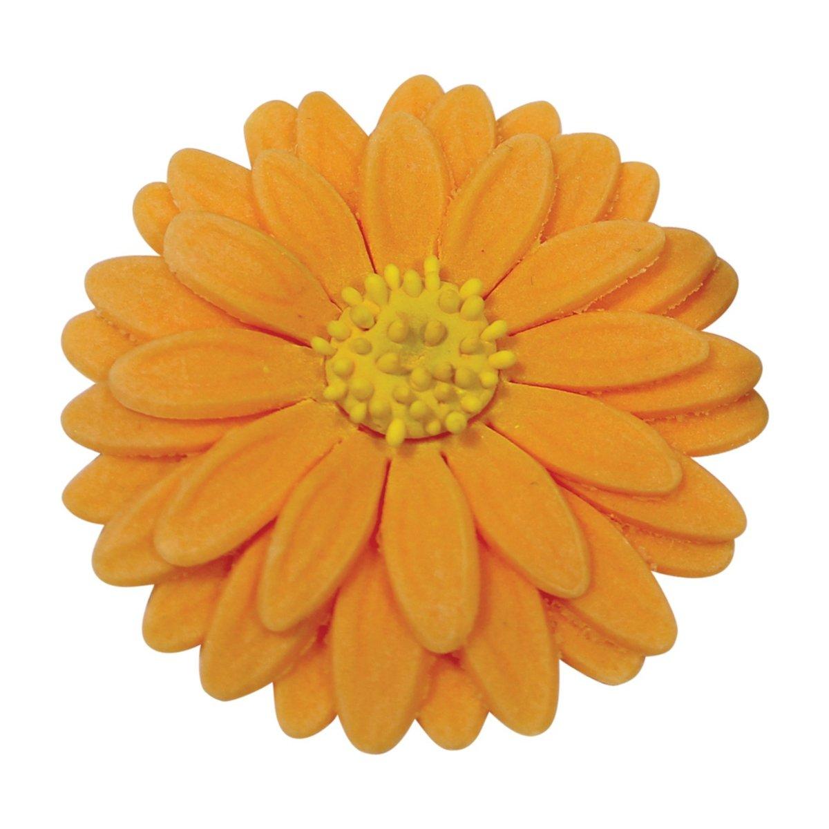 Σετ 3 κουπάτ με έμβολο ηλιοτρόπιο (sunflower)